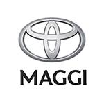 maggi_motors